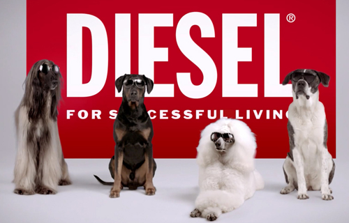 Музыка и видеоролик из рекламы Diesel Eyewear on Dogs