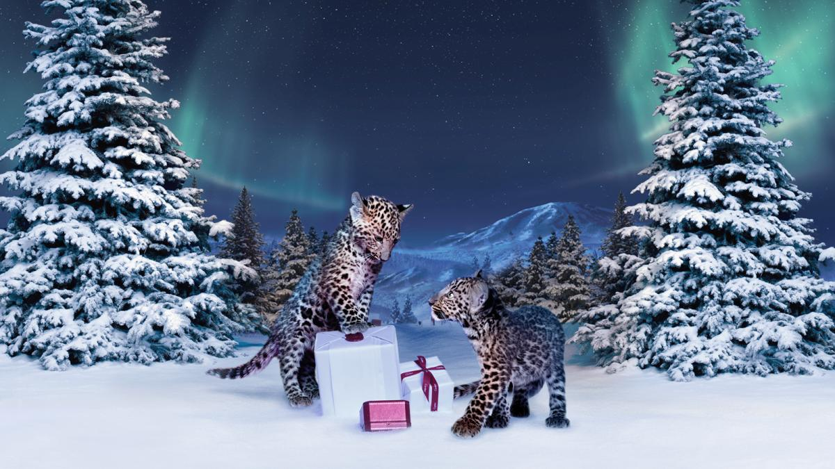 Музыка из рекламы Cartier - Winter Tale