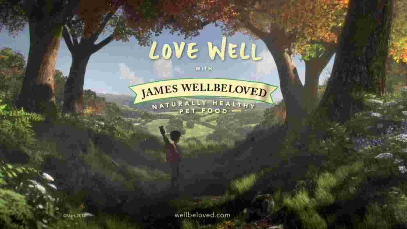 Музыка из рекламы James Wellbeloved - Mega City